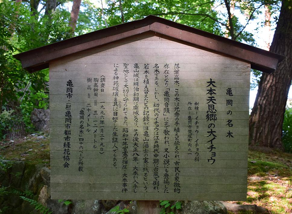 丹波亀山城を歩く。 その1 <大本・天恩郷>_e0158128_19434265.jpg