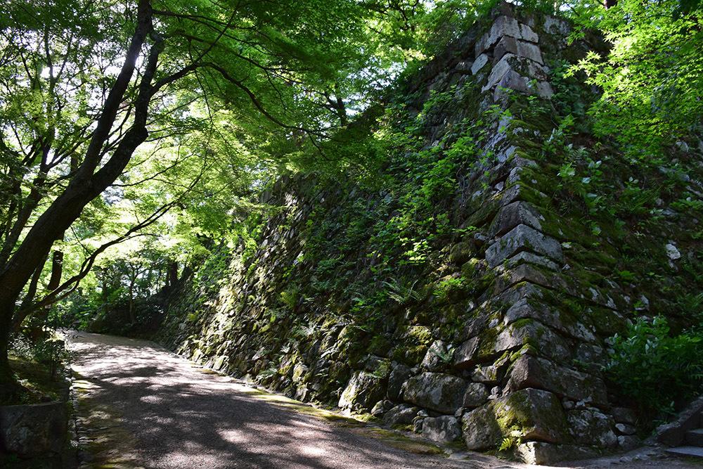 丹波亀山城を歩く。 その1 <大本・天恩郷>_e0158128_19465567.jpg
