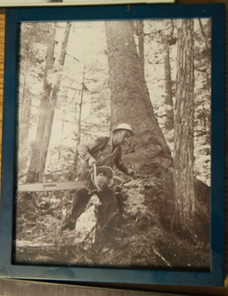 アラスカの林業_b0135948_01151341.png