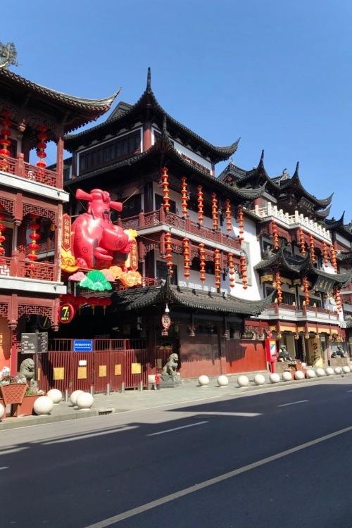 驚異の光景 in 上海_f0057849_19560339.jpg