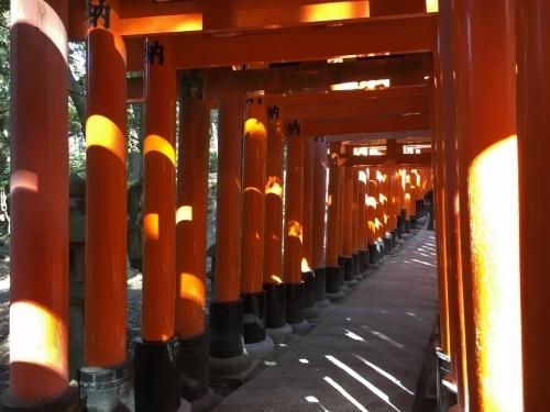 京都・奈良 冬の旅\'20 その1_e0326953_19472071.jpg