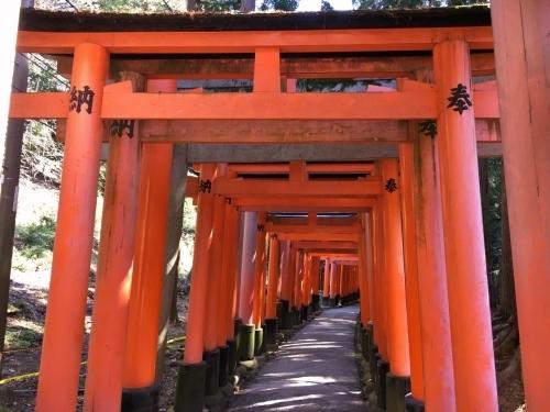 京都・奈良 冬の旅\'20 その1_e0326953_19551848.jpg