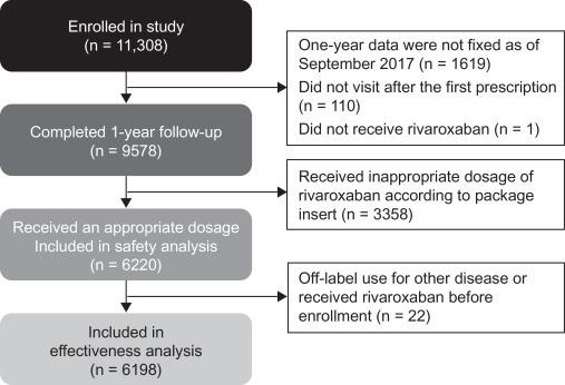 日本のNOAC/DOAC登録研究の結果は?_a0119856_07174859.jpg