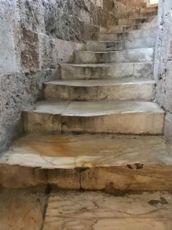 ピサの斜塔に上る:2020冬_a0136671_03082225.jpeg