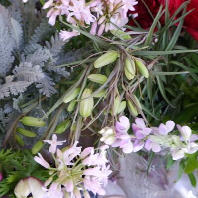 オークリーフ(今日のお店の花。明日の営業につきまして。)_f0049672_18230561.jpg