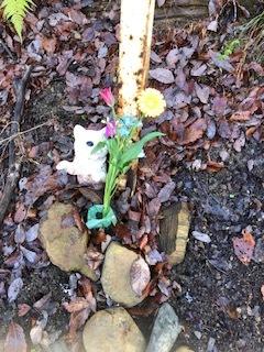 ミッキーのお墓参り。_d0171907_19430475.jpg