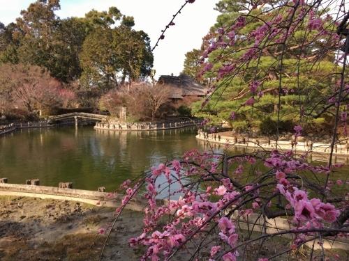 京都・奈良 冬の旅\'20 その2_e0326953_22494250.jpg