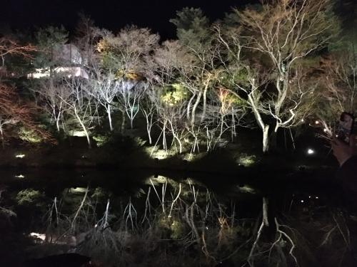 京都・奈良 冬の旅\'20 その2_e0326953_23145506.jpg