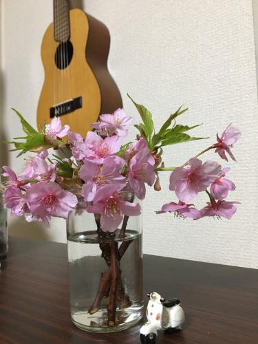 卒業式ほか_c0167359_00325158.jpg