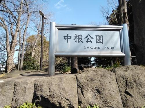やっぱり公園ははずせませんでした😅_f0395164_08423290.jpg