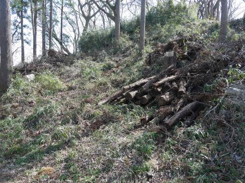 3・1六国見山手入れ(上)スギの間伐、下刈り、台風の後始末_c0014967_19003099.jpg