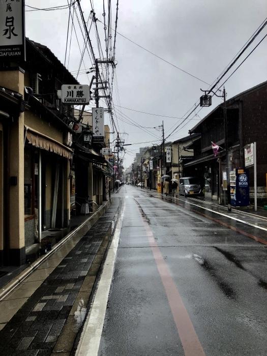 京都で2020年2月22日 猫の日に遭遇して_d0105967_01175006.jpeg