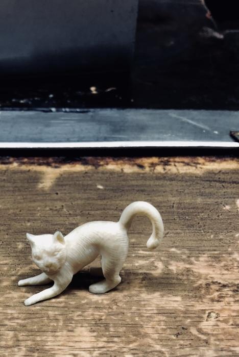 京都で2020年2月22日 猫の日に遭遇して_d0105967_01234407.jpeg