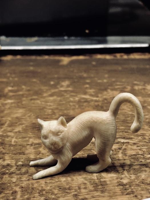 京都で2020年2月22日 猫の日に遭遇して_d0105967_01241161.jpeg