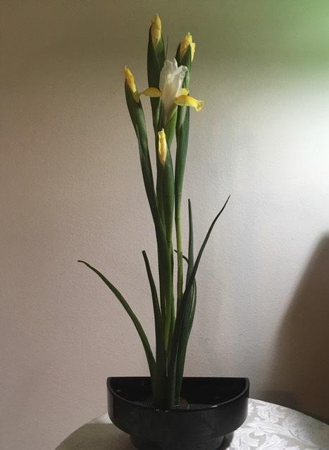 春の花、花、花_e0350971_12551950.jpg