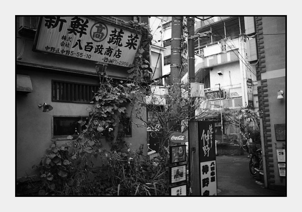 中野 -77_b0340572_21495479.jpg