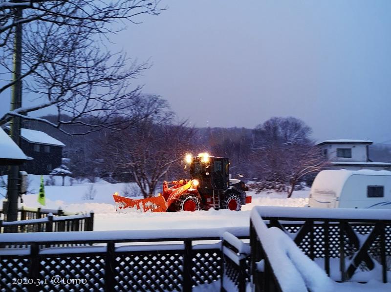 綿雪/cotton snow_f0067179_22000188.jpg