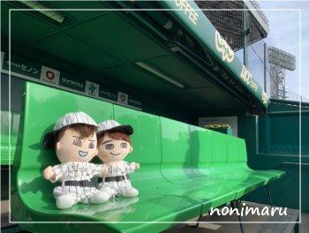 ぬい撮り at 阪神甲子園球場_c0223781_21524371.jpg