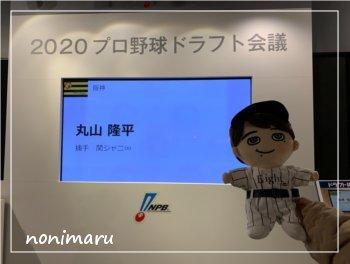 ぬい撮り at 阪神甲子園球場_c0223781_21525942.jpg