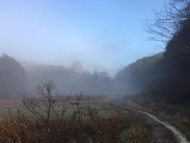 霧の朝_f0040201_16351391.jpg