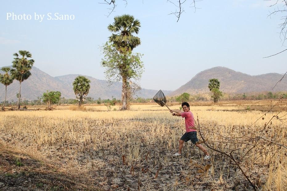 カンボジアの旅(2020年2月)~その2~_b0348205_01080902.jpg