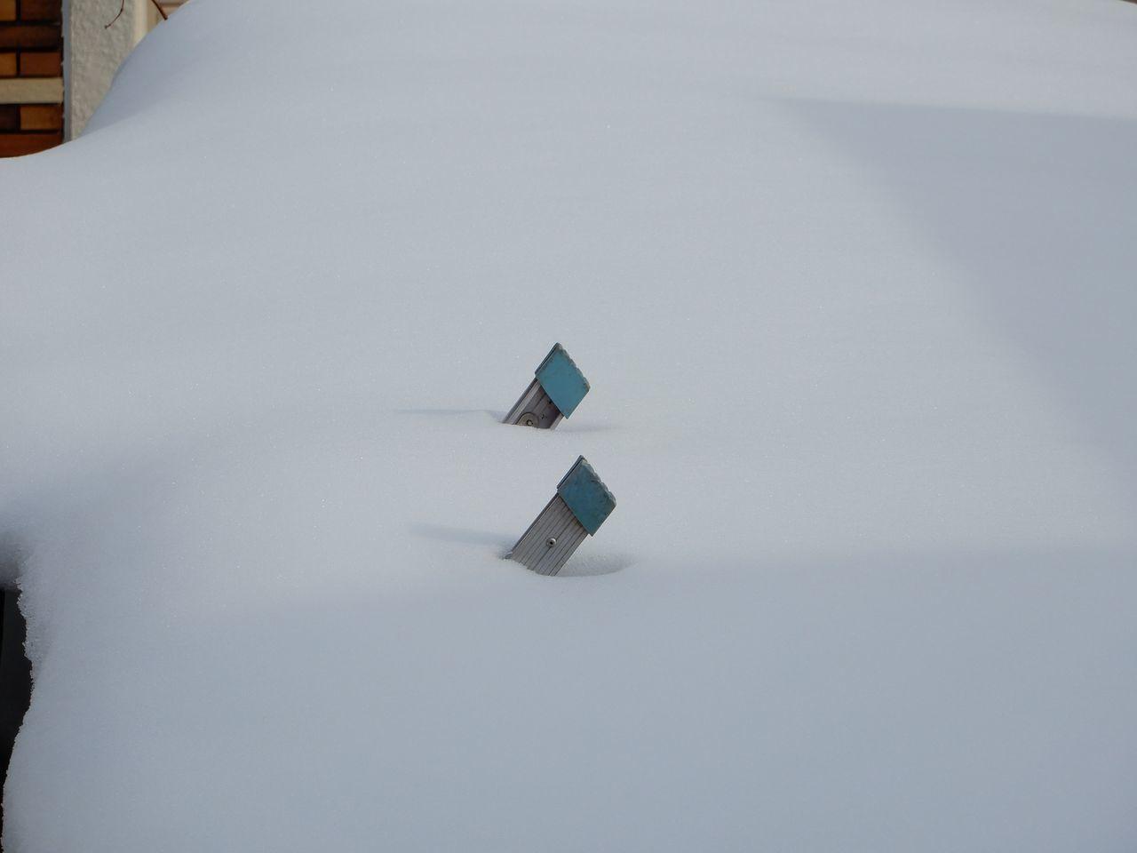ゆっくりと雪が減ります_c0025115_21452906.jpg