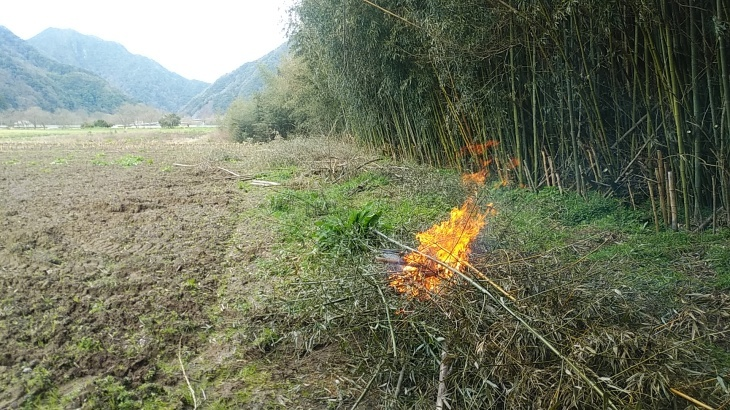 竹の焼却という作業_b0274329_12371049.jpg