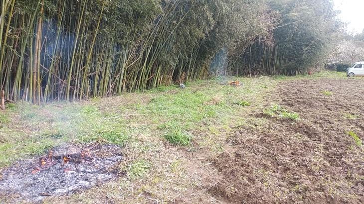 竹の焼却という作業_b0274329_12372067.jpg
