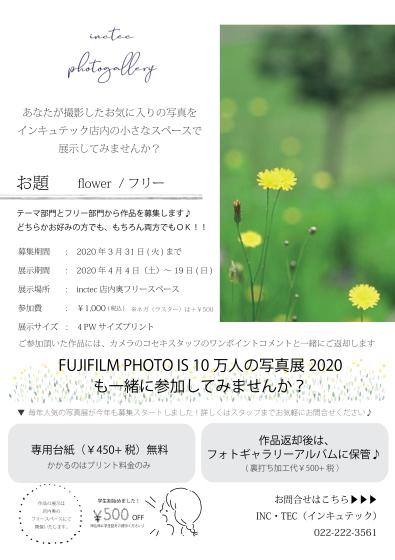 春のポストカード_c0219051_15370545.jpg