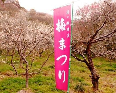 月ヶ瀬の梅♪_b0194861_11425314.jpg