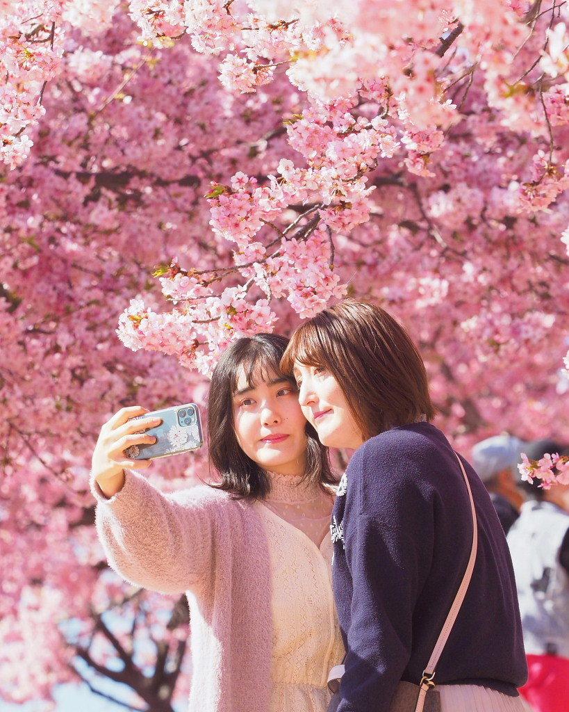 桜咲く 🌸いせさき市民のもり公園で🌸_c0305565_17460592.jpg
