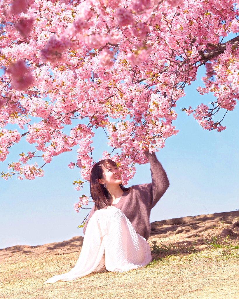 桜咲く 🌸いせさき市民のもり公園で🌸_c0305565_17471425.jpg