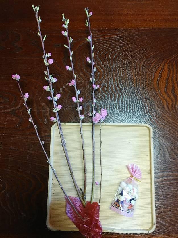 ひな祭り神事 雅楽奉仕_f0136366_11581152.jpg