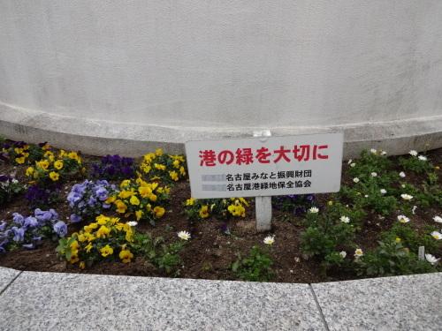 名古屋港水族館前花壇の植栽R2.3.4_d0338682_13024000.jpg