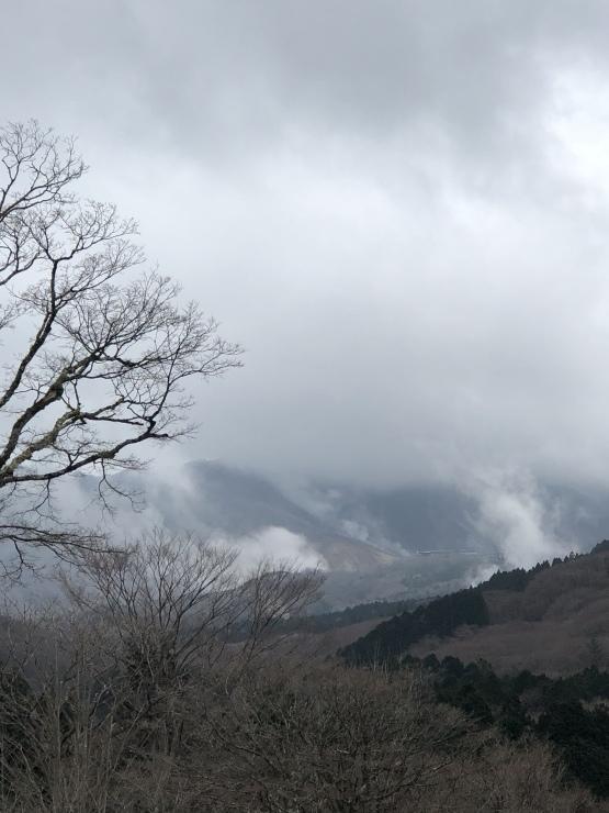 2020年3月4日 仙石原_b0098584_20081503.jpeg