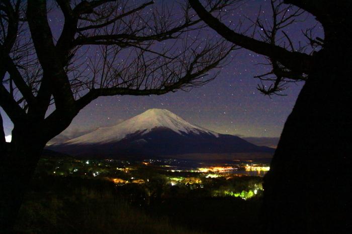 令和2年2月の富士 (25) 山中湖パノラマ台の富士_e0344396_22473462.jpg