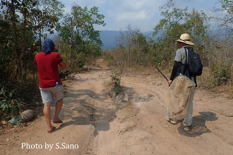 カンボジアの旅(2020年2月)~その3~_b0348205_21112404.jpg