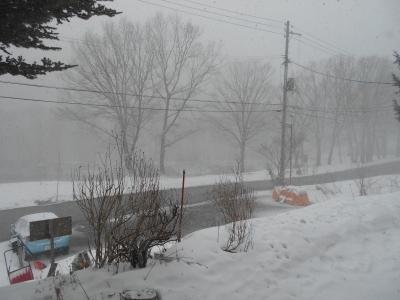 3月5日 木曜日 雪 1度_f0210811_11201239.jpg