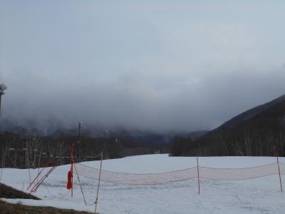 3月5日 木曜日 雪 1度_f0210811_11474060.jpg