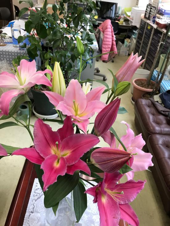 花のある暮らし_f0067514_08532417.jpg