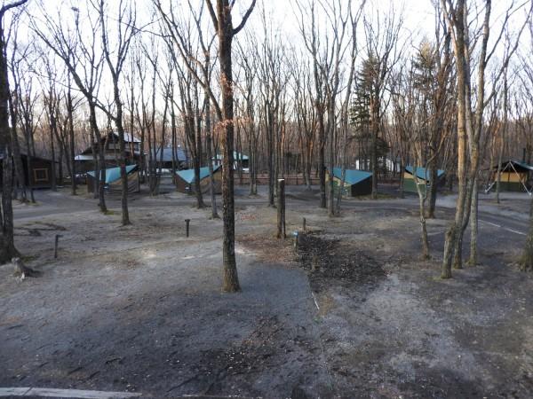 キャンプ場は休業中です(2020年3月5日)_b0174425_10162785.jpg
