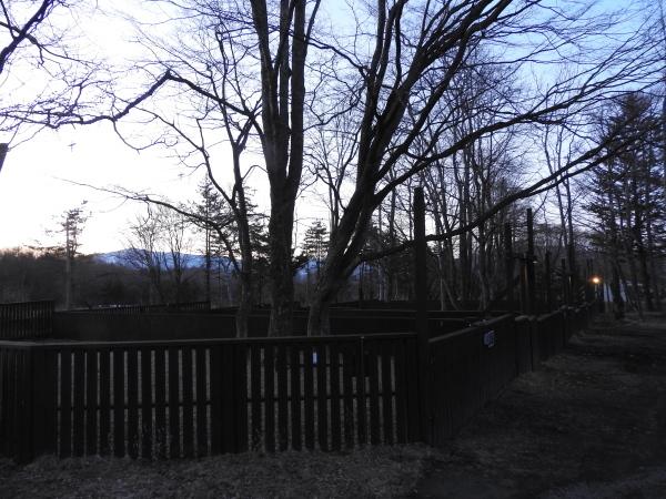 キャンプ場は休業中です(2020年3月5日)_b0174425_10445948.jpg