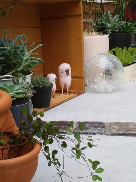 【啓蟄】お庭を自然で満たして_e0379544_16025893.jpg