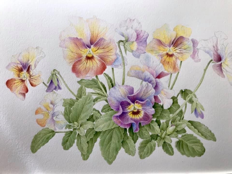 季節はもう春_b0137969_06555795.jpeg