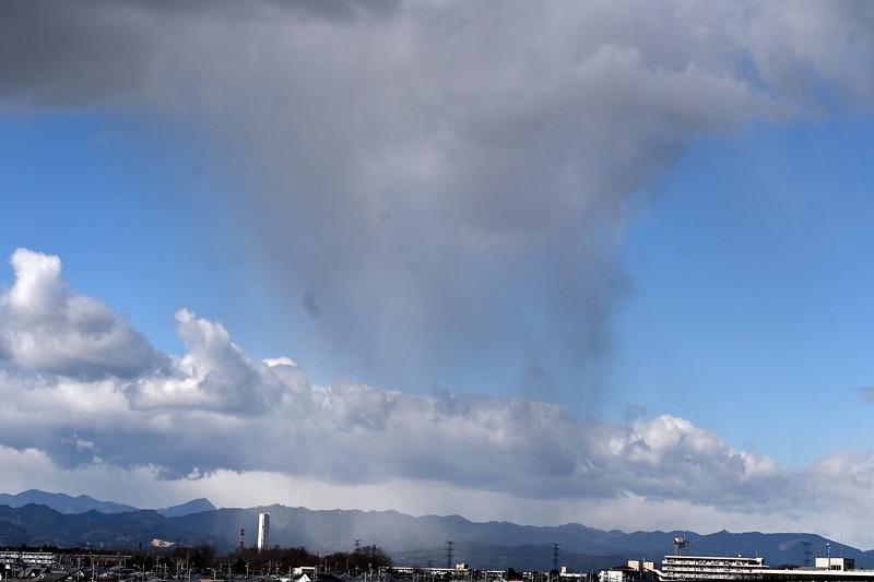 小畔川便り(北風の強い日:2020/2/27,28)_f0031682_09515967.jpg