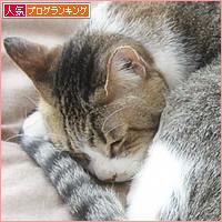 変形猫団子_a0389088_07423295.jpg