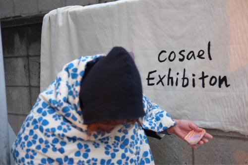 cosaelの1人展【cosael exhibition 】_b0333091_06593141.jpg