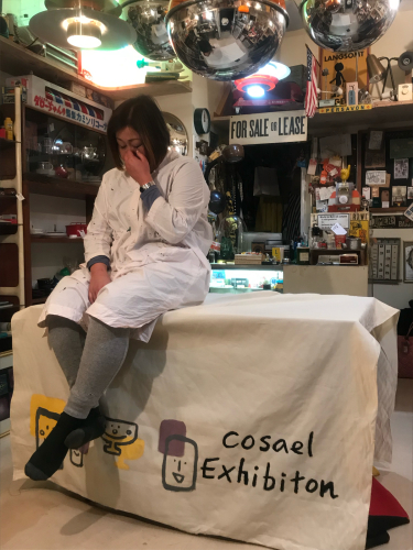 cosaelの1人展【cosael exhibition 】_b0333091_07041374.jpg