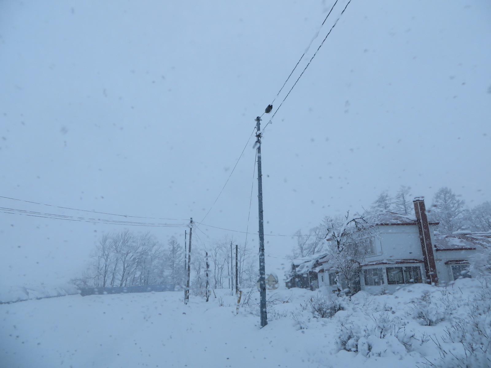 降っている雪_b0405523_10080485.jpg