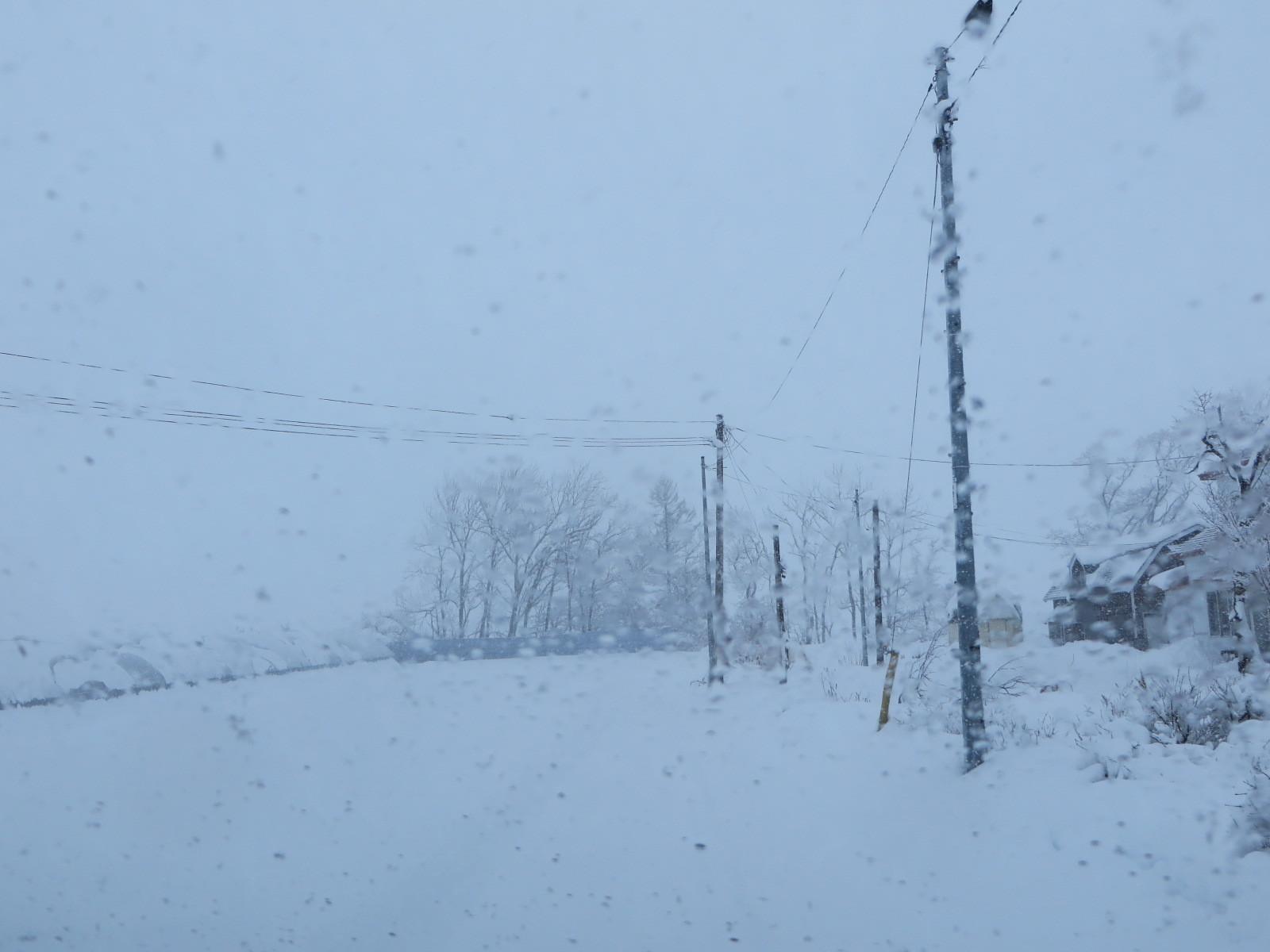 降っている雪_b0405523_10082094.jpg